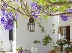 Ngôi nhà đẹp mộc mạc ở miền quê Tây Ban Nha