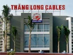 TLC: Tái cấu trúc toàn diện nhân sự, bán tài sản cơ cấu lại tài chính