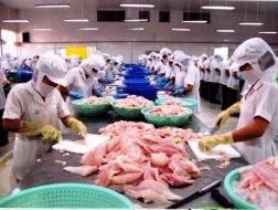 12 DN thủy sản niêm yết trên sàn lọt vào top 500 DN tư nhân lớn nhất Việt Nam