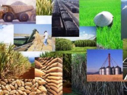 Dự báo giá các mặt hàng thiết yếu tiếp tục tăng