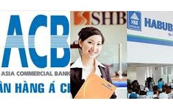 """Xóa sổ thương hiệu Habubank và """"sóng gió"""" tại ACB"""