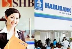 Thương hiệu Việt tan vỡ: Sự biến mất của Habubank