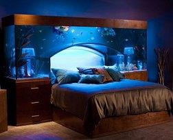 Ngắm những thiết kế phòng ngủ siêu độc đáo
