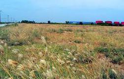 Lấy ý kiến nông dân về dự thảo luật Đất đai