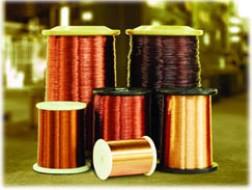 NHW: Quản lý tốt nguyên liệu đầu vào, quý 1 lãi ròng 6,8 tỷ đồng