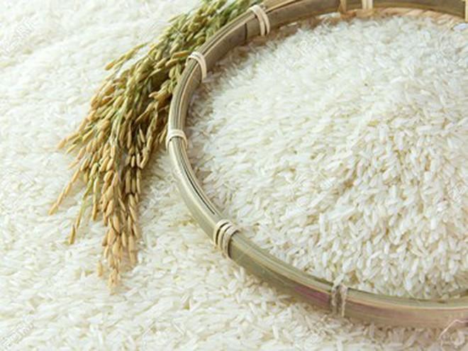 Indonesia cân nhắc khả năng nhập khẩu gạo từ Việt Nam, Thái Lan