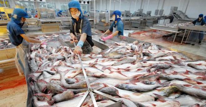 Phá giá Nhân dân tệ tác động thế nào đến hàng nông thủy sản Việt Nam?