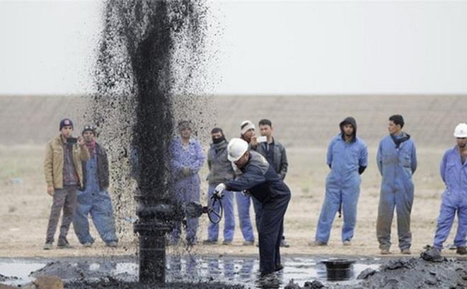 Giá dầu giảm sâu