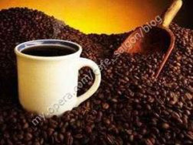 Giá cà phê tăng 3 triệu đồng/tấn chỉ trong 2 ngày