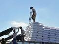 Đường của HAGL từ Lào nhập về VN chịu mức thuế suất 2,5%