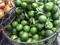 Hà thành giải khát 100 tấn cam Trung Quốc mỗi ngày
