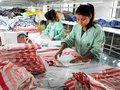 Dệt may Trung Quốc chới với vì Việt Nam và TPP