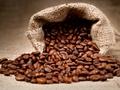 Thiếu hụt cà phê thế giới sẽ trầm trọng thêm trong vụ tới
