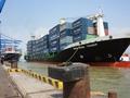 Cước phí vận tải biển đè nặng doanh nghiệp