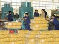 Cao su xuất khẩu tiếp tục rớt giá, giảm gần 28%