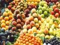 Hoa quả Trung Quốc: Biến hóa khôn lường...