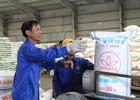 Bỏ 5% VAT cho phân bón: Doanh nghiệp, nông dân đều bất lợi