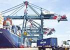Ông Bùi Thiên Thu: Nâng cao năng lực để giảm chi phí logistics
