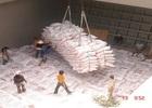 Giá lúa gạo sẽ tăng trở lại?