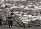 Philippines sẽ nhập 500.000 tấn gạo từ Thái Lan và Việt Nam