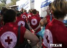 Một số xe chở hàng nhân đạo cho Lugansk đã trở về lãnh thổ Nga