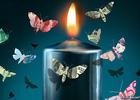 Ngân hàng trong bóng tối có lợi hay có hại?