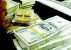Ngày 21/11 : USD ngân hàng tăng giảm trái chiều, Vàng SJC tăng giá