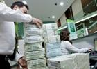 Ngày 25/11 : USD ngân hàng tăng, Vàng SJC đi ngang