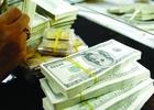 USD ngân hàng tăng vọt trở lại lên 21.320 đồng, giá vàng vẫn giảm