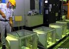 TP.HCM: Chỉ số sản xuất công nghiệp tháng 10 tăng đột biến 5,2%