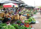 Tin kinh tế 24/11: Giá xăng giảm mạnh kéo CPI cả nước tháng 11 đảo chiều giảm