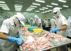 Tổng sản lượng thủy sản 11 tháng đạt gần 6 triệu tấn