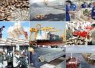 """Điểm danh những mặt hàng """"tỷ đô"""" Việt Nam nhập khẩu từ Trung Quốc"""