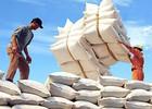 Hà Nội: Nhập siêu hơn 13 tỷ USD năm 2014