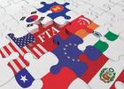 Kinh nghiệm gia nhập WTO và việc vận dụng cho FTA, TPP