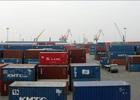 Cảng Đình Vũ: Lãi ròng 66 tỷ đồng, biên lãi ròng đạt 50%