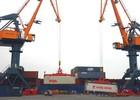 Công ty Vận tải và Xếp dỡ Hải An đăng ký niêm yết trên HoSE