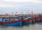 Ngư dân Quảng Ngãi chưa mấy mặn mà với tàu vỏ thép