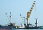 Kinh tế Việt Nam: Những dấu hiệu tích cực