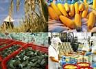 Tăng sức cạnh tranh cho hàng hóa Việt