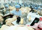 TPP: Mỹ cần linh hoạt hơn trong đàm phán mở cửa thị trường với Việt Nam