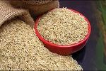 HNX nhận hồ sơ đăng ký niêm yết của Ha Noi–Kinh Bac Agrifood