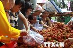 """""""Bài toán"""" trái cây Việt Nam: Thừa lượng nhưng vẫn thiếu chất"""