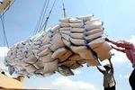 VFA điều chỉnh giá sàn gạo xuất khẩu