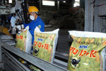 Cơ hội xuất khẩu phân bón vào thị trường ASEAN