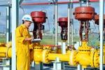 GAS sẽ mua lại 10 triệu cổ phiếu quỹ với khoảng giá tối đa là 100.000 đồng/cp