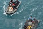 """Thấy tín hiệu """"ping"""" khi tìm hộp đen của máy bay QZ8501"""