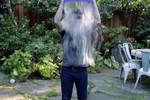 Thú vị hình ảnh ông chủ Facebook dội xô nước lạnh lên đầu