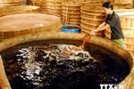 Nước mắm Phú Quốc đang hồi sinh