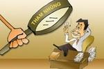 TP.HCM: Gần 30% đơn vị bị thanh tra có hành vi tham nhũng